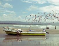 Búcaro, Panama photography