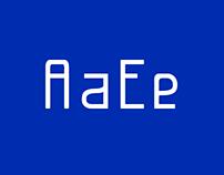 Analog Type