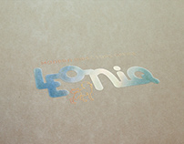 Branding and Design for LEONIQ Modern directors office