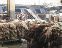 china tannery