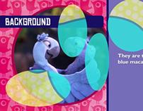 Logo & Pre-Show Animation (Rio 4D)