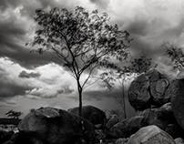 Pedras e Céu
