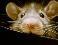 Mouse II