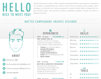 CV - Infographic