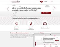 Web Site / Arte