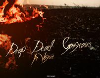 Album cover  Drop Dead, Gorgeous - In Vogue