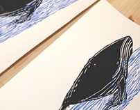 Prints in xylography - Whales