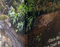 Costa Rica: The Rich Coast Ride-Along