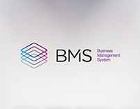 BMS Business Management System