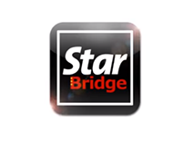 Star Bridge- Student Kancil Award 2011 GOLD