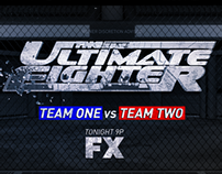 The Ultimate Fighter Frames