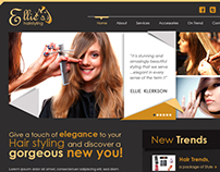 Hair Stylist's Website