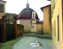 """Micro Oasi Naturale """"Il Borratino"""""""