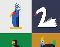 Birds Numbers