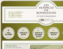 Les Hospices de Bourgogne