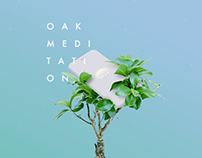 Oak Meditation