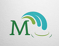 Corporate Identity - Manantial