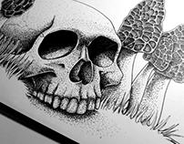 Skull & Morel