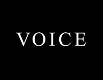 VOICE corporate identity
