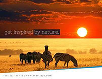 POSM for Kearsleys Travel Tanzania