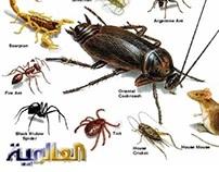 http://alaamiah.com/blog/spraying-pesticides-w2