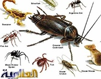 http://alaamiah.com/blog/spraying-pesticides-w3