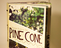 Nature Study on the Pine Cone