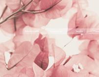 Weleda | Relaunch