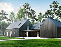 Ronander and Laursen Hofterup - Exterior Visualisation