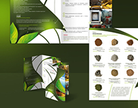 Print | Brochure and Flyers