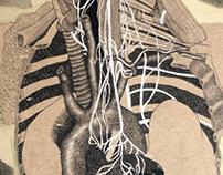 untitled anatomy stuff