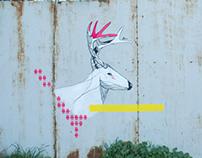 Deer. 2014. athens