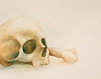 Watercolour pencil #1