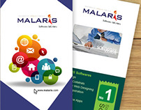 MALARiS Flyers