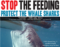 Graphic Design: Whale Shark Feeding Campaign
