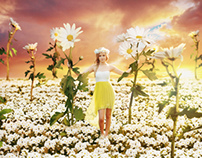 Katey - Pushing Daisies