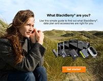 BlackBerry in Walmart