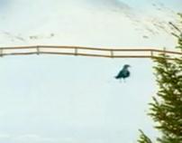 """Vizir/Tide """"Bird"""", TV 2001"""