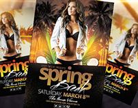 Spring Break / Summer Party | Flyer Template