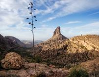 Weaver's Needle and the Perlata Trail
