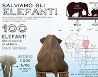 INFOGRAPHIC: Salviamo gli elefanti
