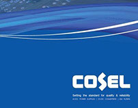 Capabilities Brochure for Cosel USA