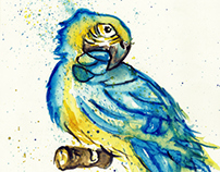 WATERCOLOUR PARROT