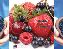 Seasonal Berries Brochures