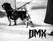 DMX - Shamija king