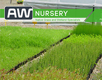 Australian Wetlands Nursery - Website