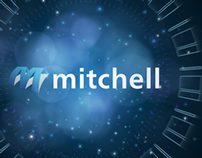 Mitchell International - Devcon 2014
