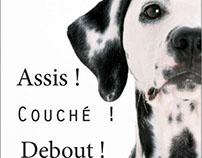 Layout Magazine - Assis, Couché, debout !