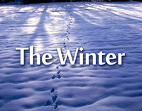 TheWinter