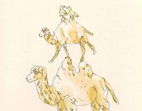 Camel Stack